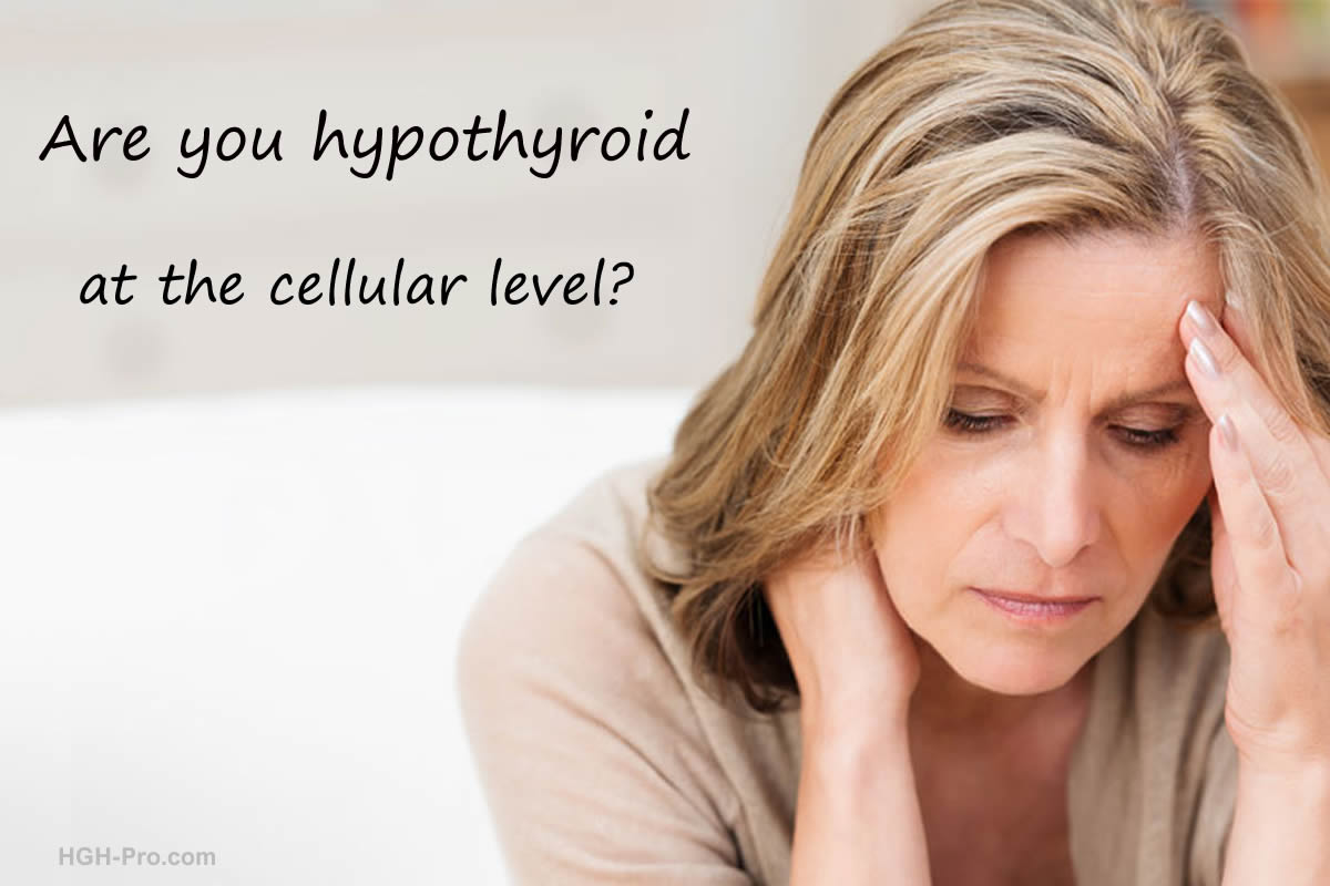 Are you hypothyroid at the cellular level?